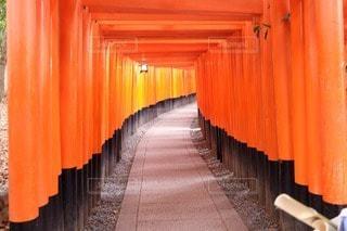 京都の写真・画像素材[71952]