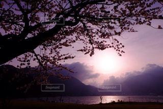 夕日の写真・画像素材[148754]