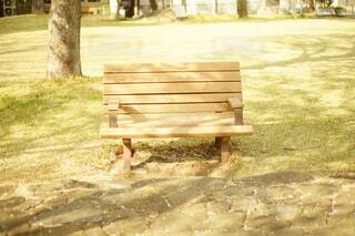 公園の真ん中に座っている木製のベンチの写真・画像素材[1101942]