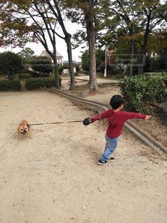 子どもと犬の散歩の写真・画像素材[1630141]