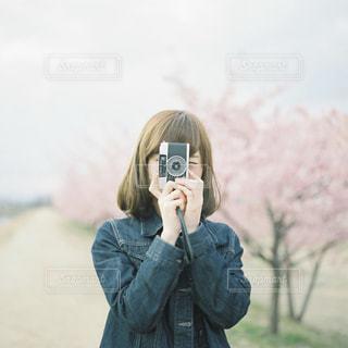 桜の写真・画像素材[1495207]
