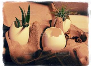テーブルの上の花の花瓶の写真・画像素材[1510437]