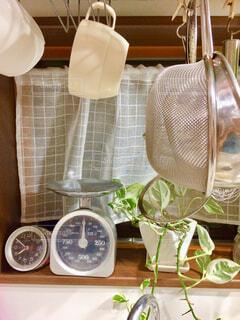 キッチンツールと観葉植物の写真・画像素材[1496490]