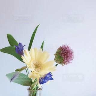 花💐の写真・画像素材[1496504]