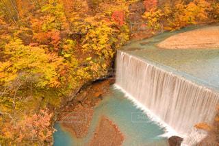 紅葉の中の滝の写真・画像素材[1745818]