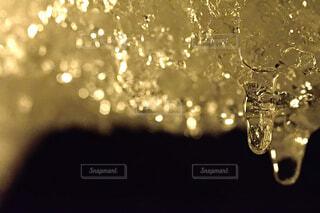 雫が滴る瞬間の写真・画像素材[1745886]