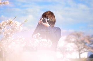 桜を撮る人の写真・画像素材[1745896]