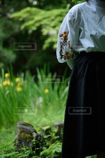女性と自然の写真・画像素材[1745915]
