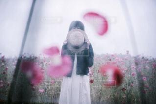 ビニール傘越しの貴女の写真・画像素材[1746244]