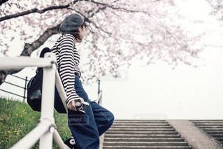 公園の桜の写真・画像素材[1746248]