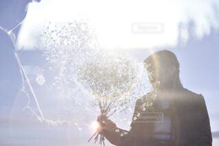 かすみ草と多重露光の写真・画像素材[1784819]