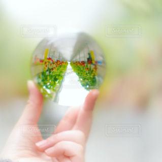 水晶に映るいちご農園の写真・画像素材[1784874]