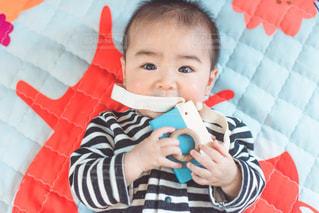 生後6ヶ月のカメラマンの写真・画像素材[2015245]