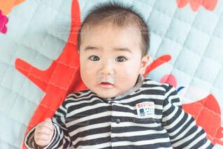 6ヶ月の赤ちゃんの写真・画像素材[2015252]