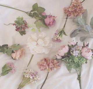 花の写真・画像素材[1497514]