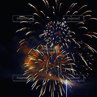 花火の写真・画像素材[222209]