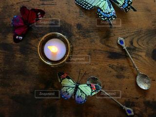 蝶とキャンドルの写真・画像素材[1501120]