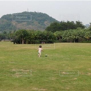 公園の芝生広場でボール遊びの写真・画像素材[4151252]