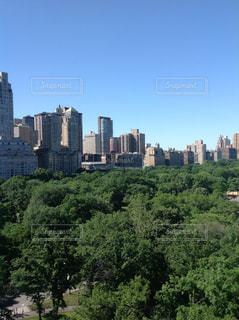 ニューヨーク、セントラルパークの写真・画像素材[1500689]