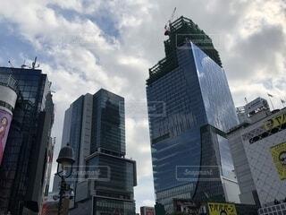 渋谷の写真・画像素材[1524761]