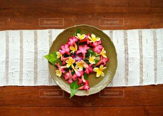 花の写真・画像素材[1501837]