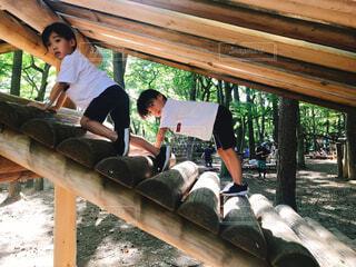 アスレチックで遊ぶ子供の写真・画像素材[1521658]