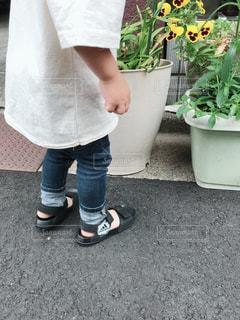 地面に立っている小さな男の子の写真・画像素材[1504245]