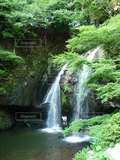 裏見の滝の写真・画像素材[1514976]