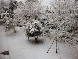 雪景色の写真・画像素材[2476250]