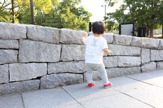 石垣を伝い歩きの写真・画像素材[2493257]