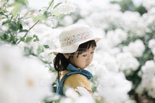帽子をかぶった小さな男の子の写真・画像素材[1503718]
