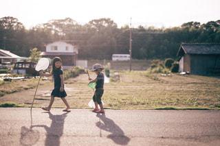 草の中を歩く少年の写真・画像素材[1503721]