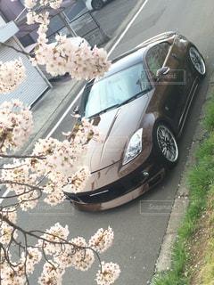 桜と車の写真・画像素材[1504823]