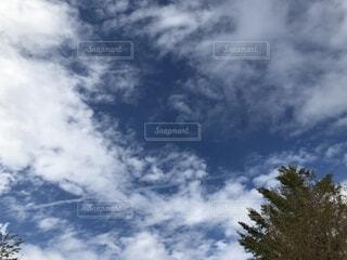 青い空に雲の写真・画像素材[1544655]