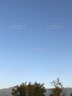 昼の月の写真・画像素材[1571865]