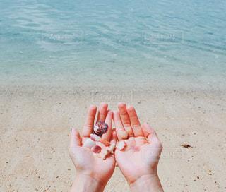 水の体の近くのビーチに座っている人の写真・画像素材[1525016]