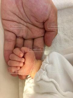 赤ちゃんの手の写真・画像素材[1507510]