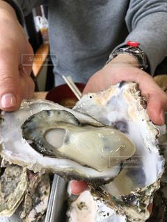 牡蠣食べ放題の写真・画像素材[1507134]