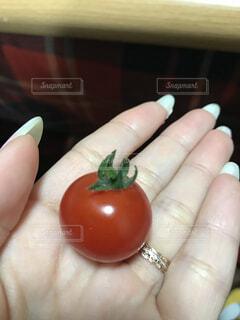 食品の小片を持っている手の写真・画像素材[1507834]