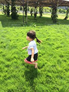 走るの大好き大自然の写真・画像素材[1509517]