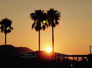 夕暮れのビーチの写真・画像素材[1523407]