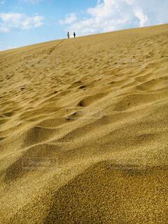 砂の波紋が綺麗な砂丘の写真・画像素材[1530050]