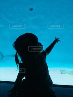 水族館と娘の写真・画像素材[1550922]