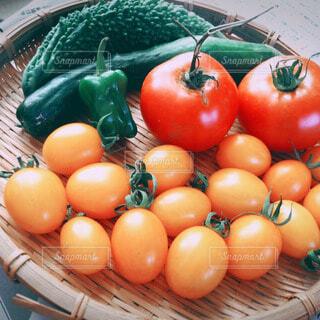 夏野菜の写真・画像素材[49596]