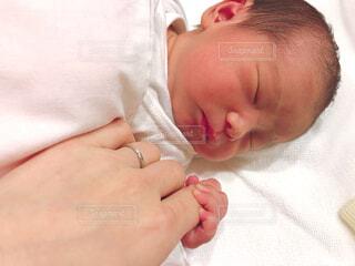 赤ちゃんの手の写真・画像素材[1519833]