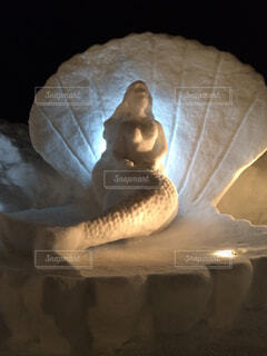 人魚の写真・画像素材[1507511]
