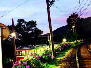 箱根 あじさい電車の写真・画像素材[1510791]