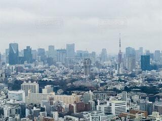 恵比寿ガーデンプレイスからの景色の写真・画像素材[2362845]