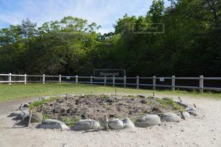 サツキとメイの家 木の実を植えた庭の写真・画像素材[2448273]