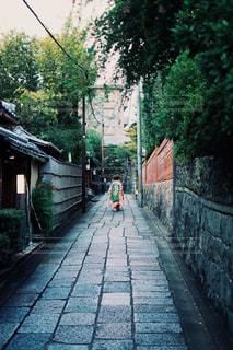 京都の通りを通る舞妓さんの後ろ姿の写真・画像素材[1656518]
